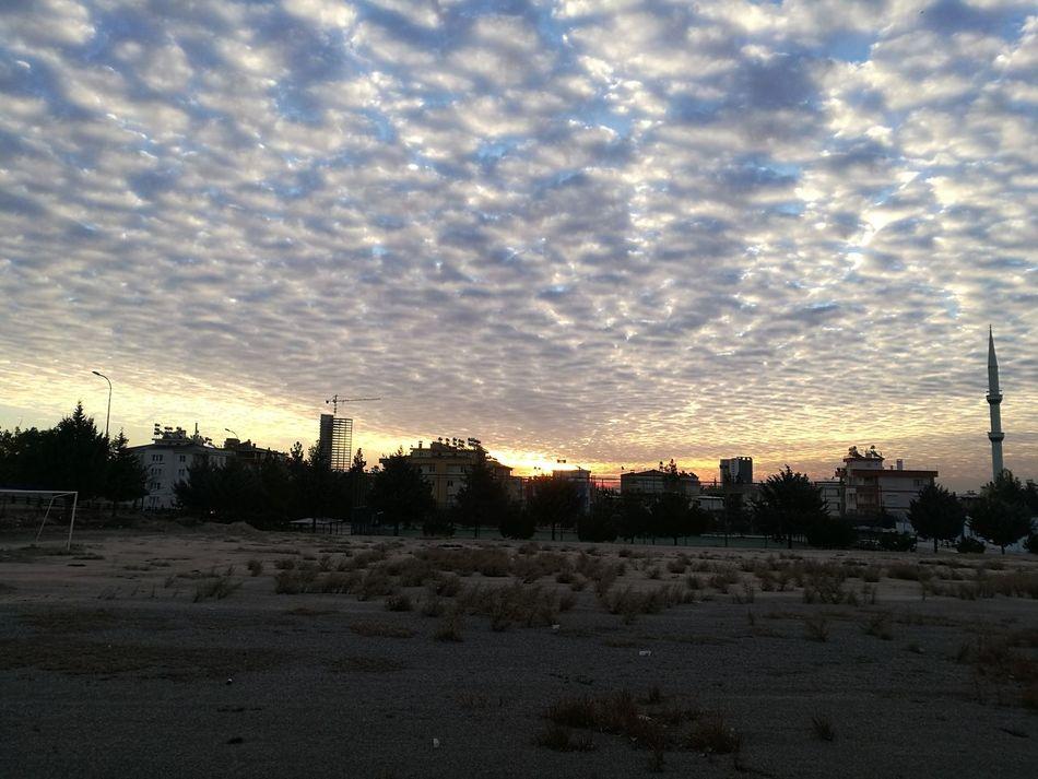 Sunrise Freezing Morning