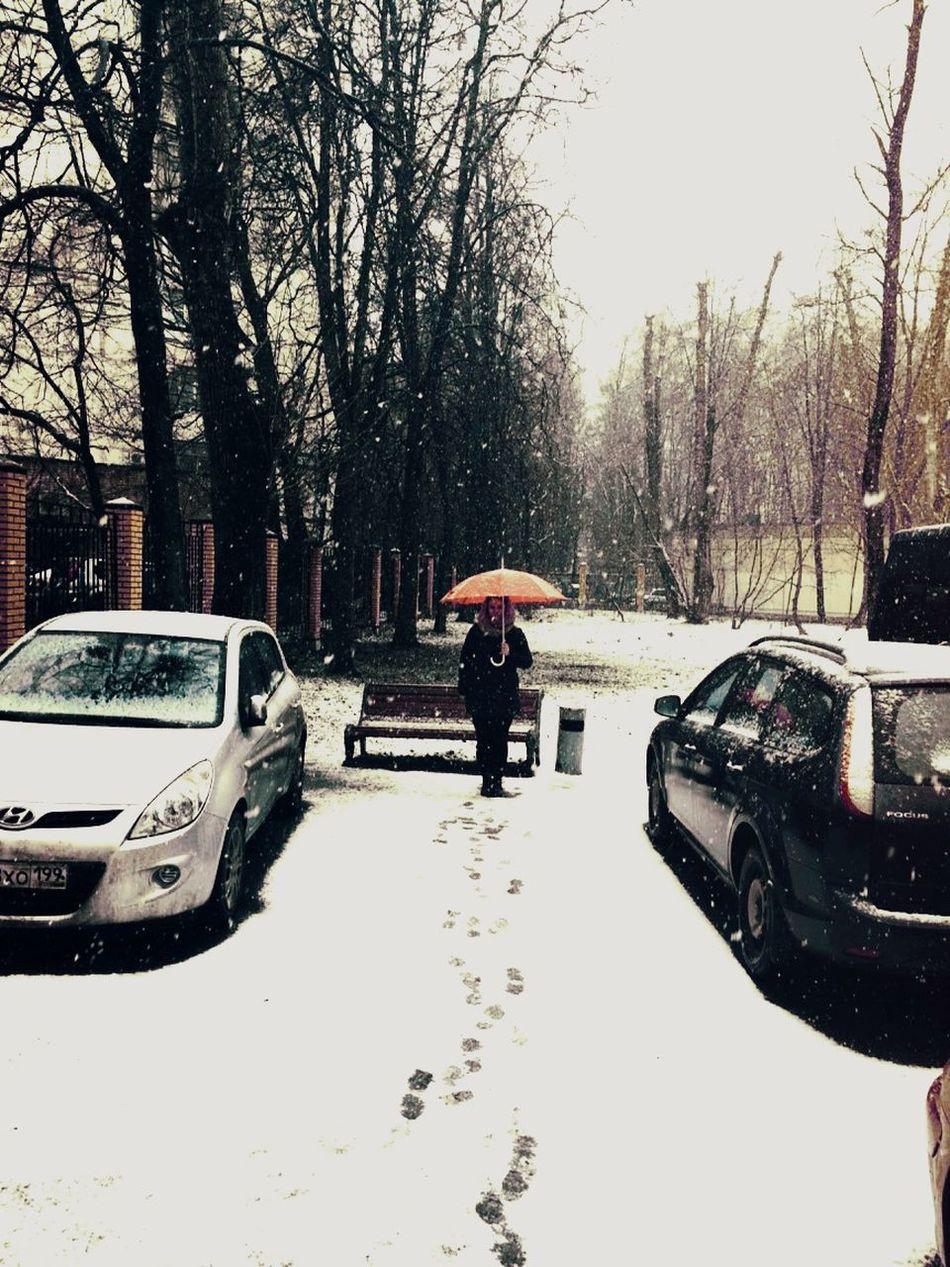 Spring Spring's Snow Snow Umbrella Girl