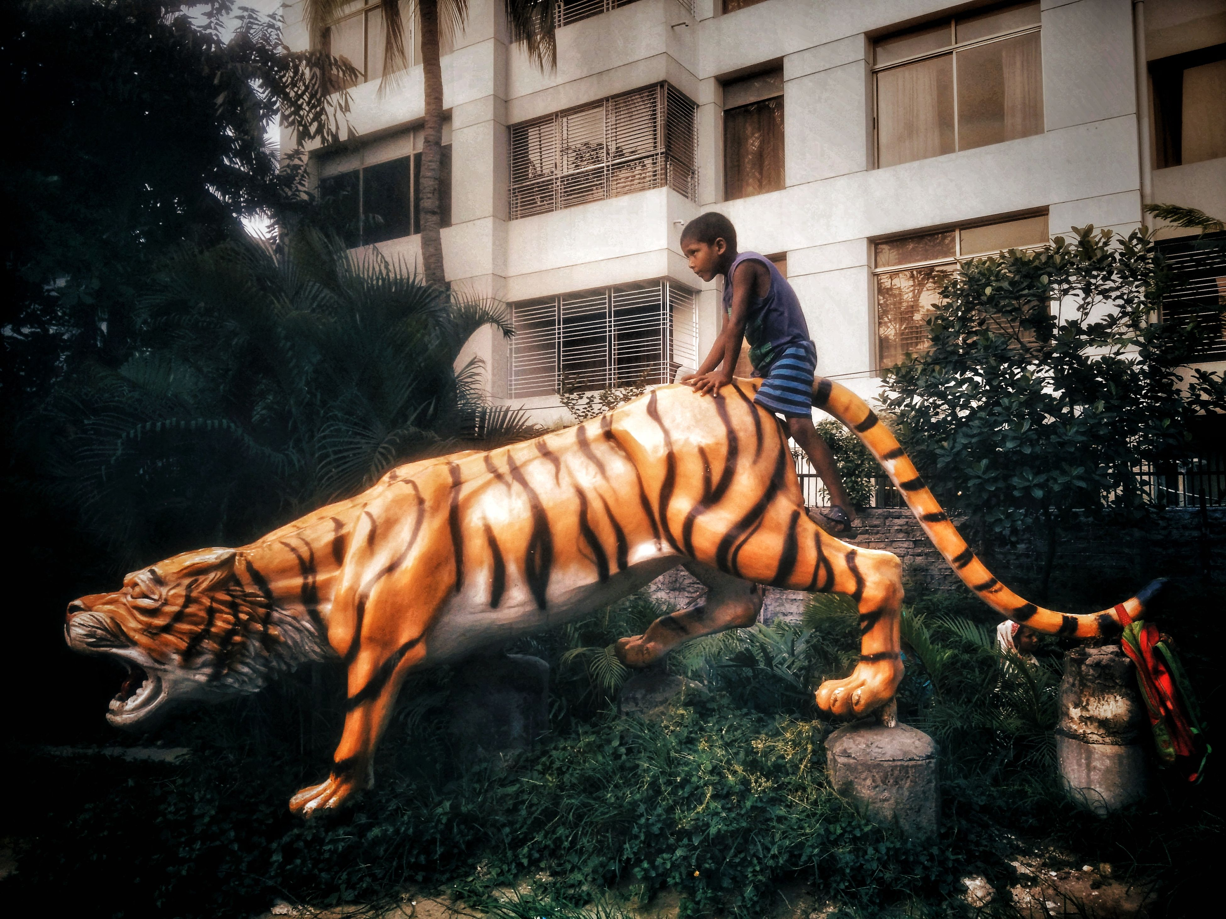 animal themes, one animal, full length, tiger, real people, one person, outdoors, lifestyles, leisure activity, mammal, domestic animals, day, architecture, building exterior, young adult, zebra, pets, nature, people