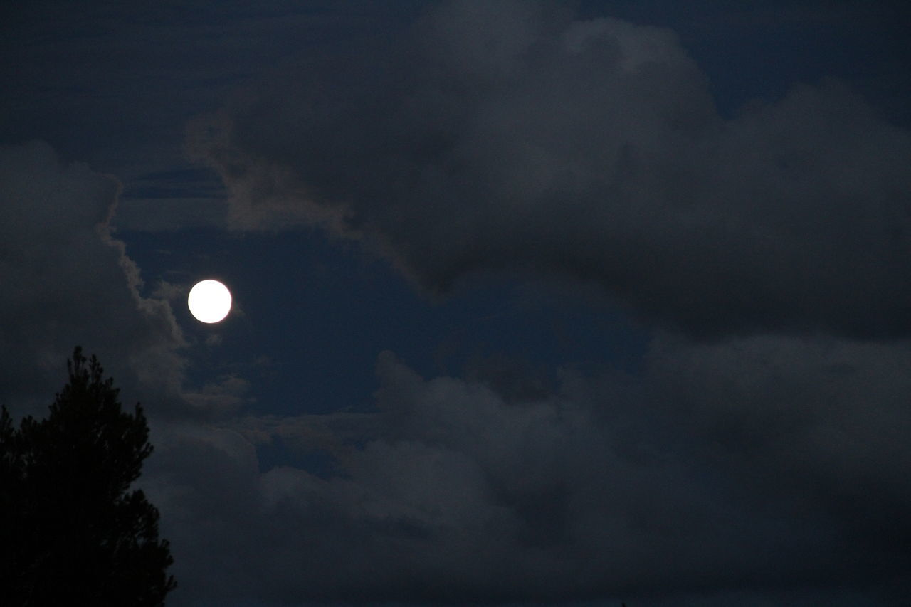 moon, cloud - sky, sky, beauty in nature, scenics, nature, low angle view, tranquility, astronomy, outdoors, no people, tranquil scene, night, crescent, solar eclipse, sky only, half moon, tree