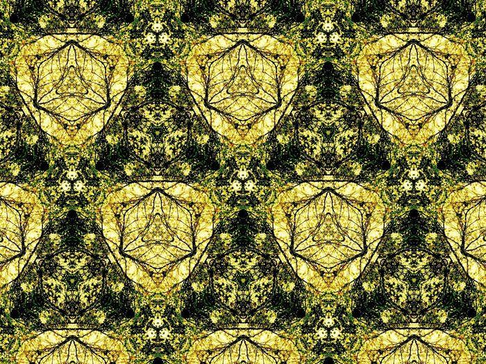 Kaleidoscope Fractals Fractalreverb Streogram Skyporn Imagination Love Art Black & White Eye4photography