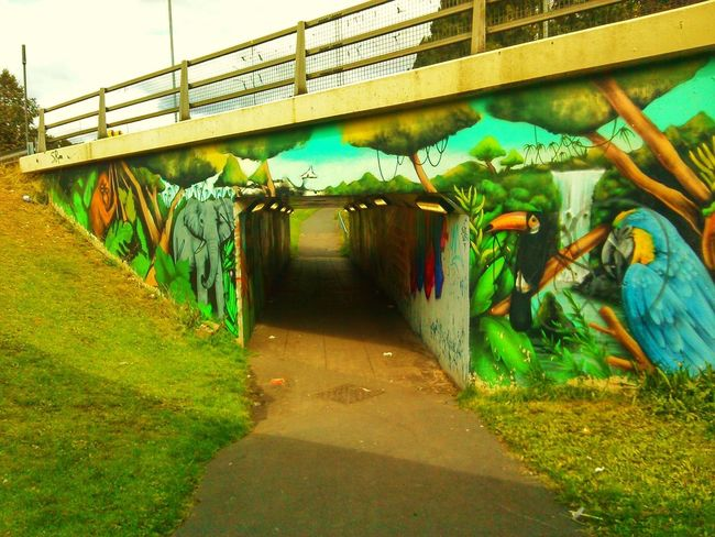 Grafiti Art Tagging Bridge Jungle
