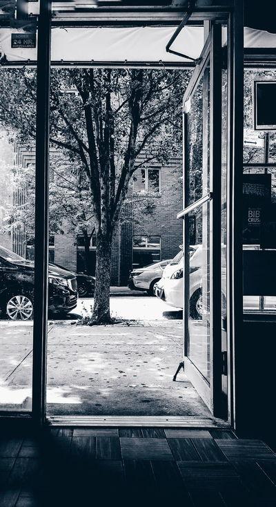 Doorway Door Blaxkandwhite Blackandwhite Photography Trees Showcase July