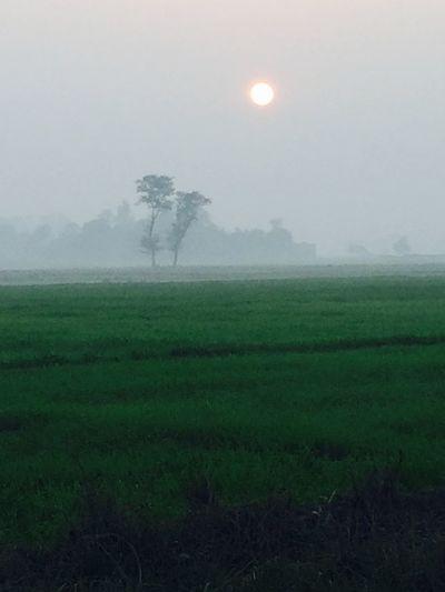 Traveling Lovely Weather Love Watching Sky Sunset Orange Lovelyday💛 Throwback
