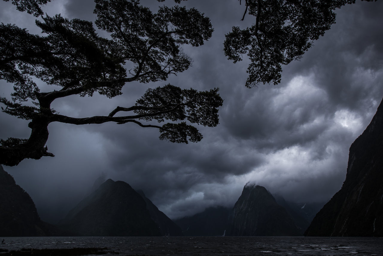 Heavy summer rain and storms over Milford Sound, New Zealand Black Dark Dramatic Fiord Fiordland Fiordland National Park Fjord Landscape Milford Sound Mountain New Zealand Rain Scenics Sky Storm Stormy Weather Summer Sunset Weather Wet