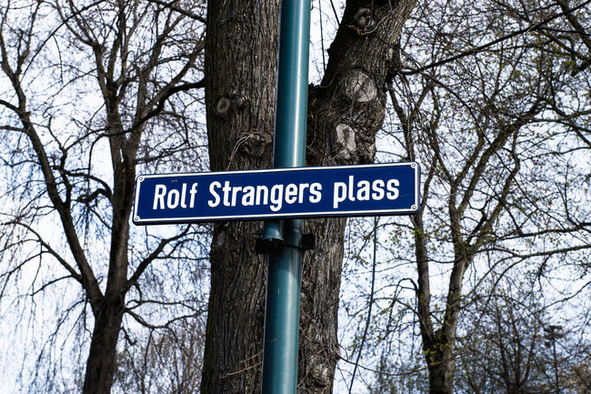 Rolf Strangers plass Arrow Symbol Bare Tree Branch Capital Letter City Communication Direction Directional Sign Guidance Information Information Sign Low Angle View Non-western Script Oslo Oslo Promenade Pole Road Sign Rolf Strangers Plass Sign Sky Text Tree Tree Trunk Western Script