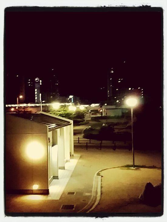 夜の公園。
