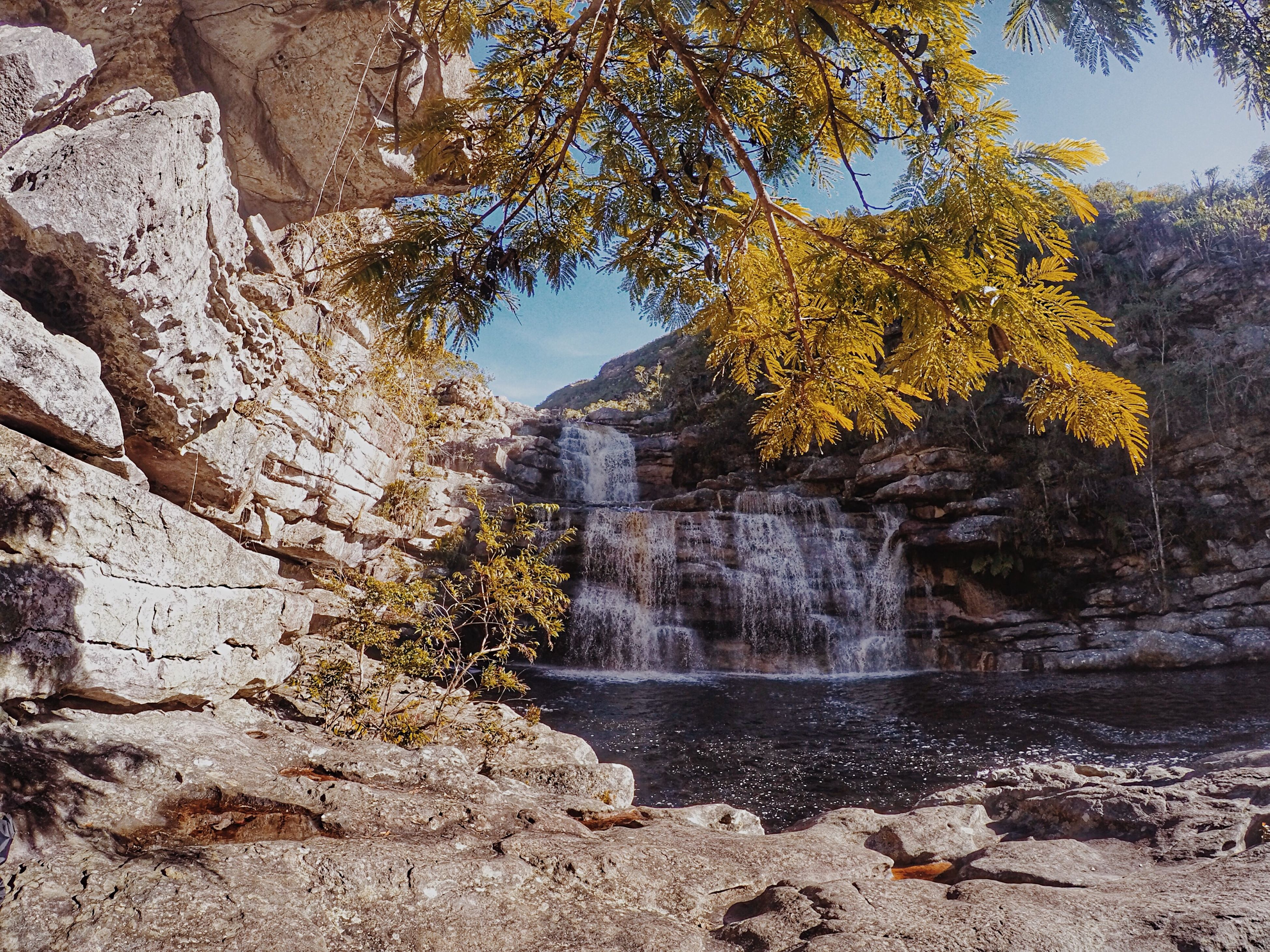 architecture, built structure, building exterior, tree, clear sky, water, rock - object, day, nature, religion, outdoors, sunlight, no people, yellow, sky, branch, low angle view, autumn, place of worship, growth