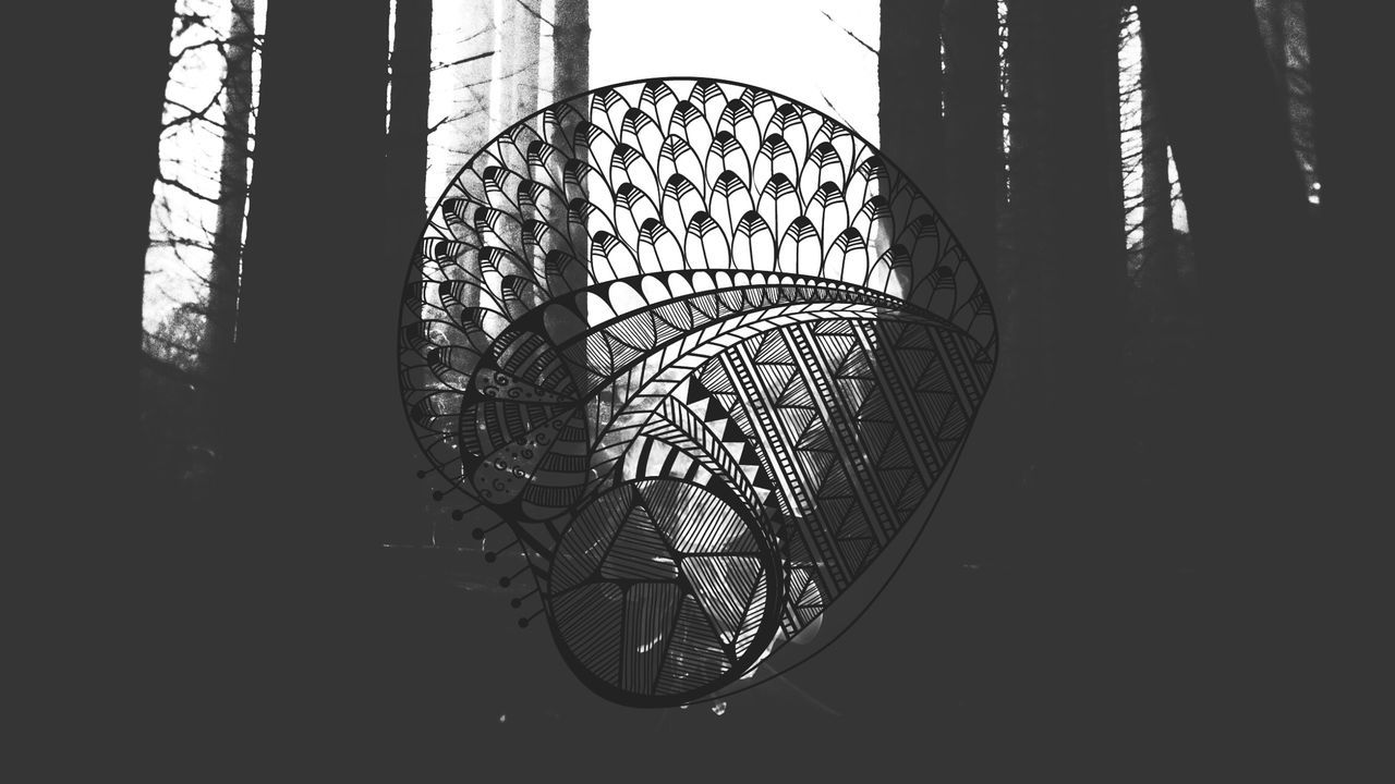 Mixture  Mashup Bird Feather  Tribal Geometry Nature Woods Forest
