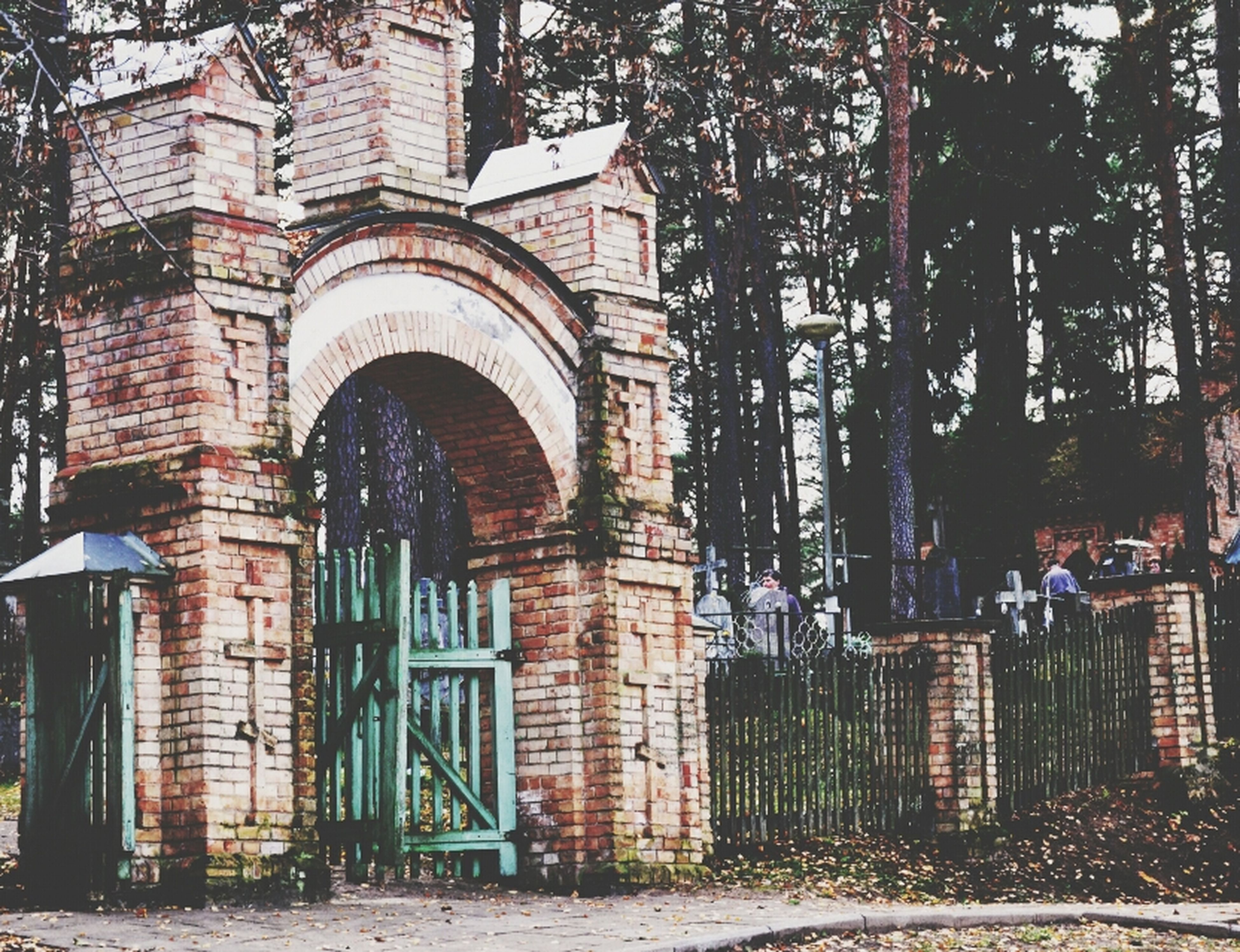 architecture, built structure, building exterior, tree, arch, building, old, entrance, facade, gate, window, house, outdoors, door, day, residential structure, tree trunk, residential building, brick wall, bare tree
