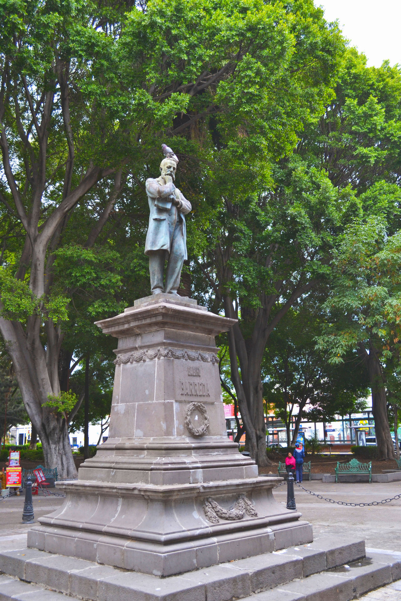 Dove Historic Historical Building Main Square Momument Outdoors Park Park - Man Made Space Pigeon Bird  Playpen Sculpture Statue Street Streetphotography Tree Zócalo