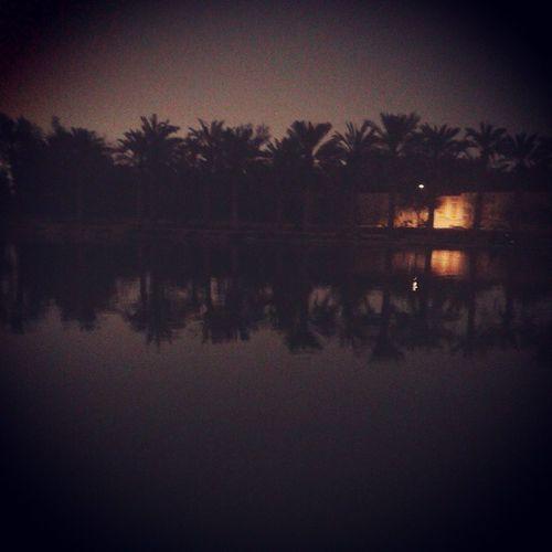 وادي حنيفة الرياض تصويري