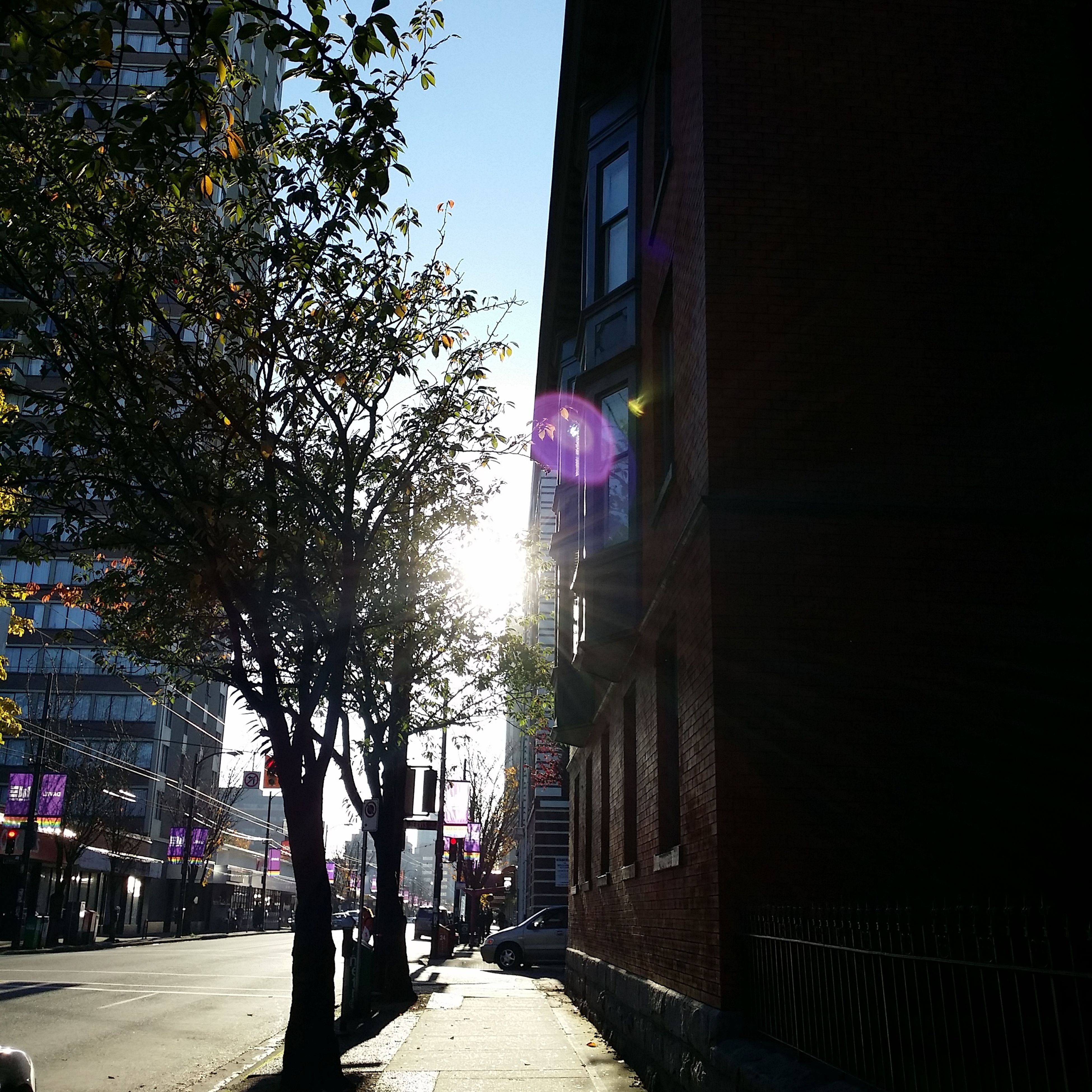 building exterior, architecture, built structure, the way forward, street, city, transportation, road, diminishing perspective, building, tree, street light, city street, car, city life, residential building, sunlight, vanishing point, incidental people, illuminated
