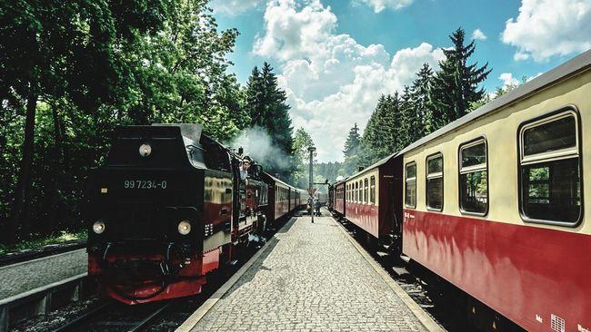 Harz Schmalspurbahn Nationalpark train Steam Locomotive Steam Wernigerode Tourist Home Deutschland Sony A6000 Germany
