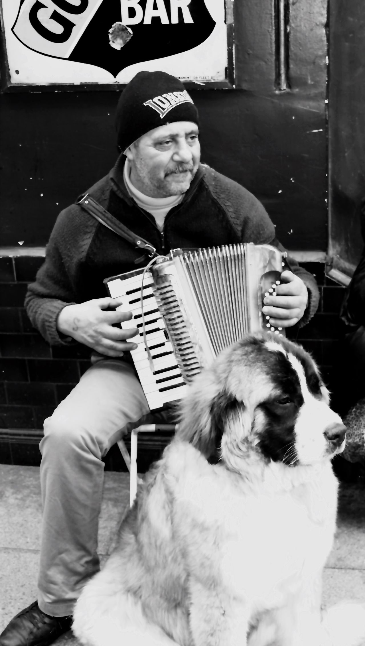 Saint Bernard London Embankment Man Instrument Busker Busking Dog Nikon Nikond5300 Real People Blackandwhite Blackandwhite Photography Black & White Streetphotography Eyeemoninstagram