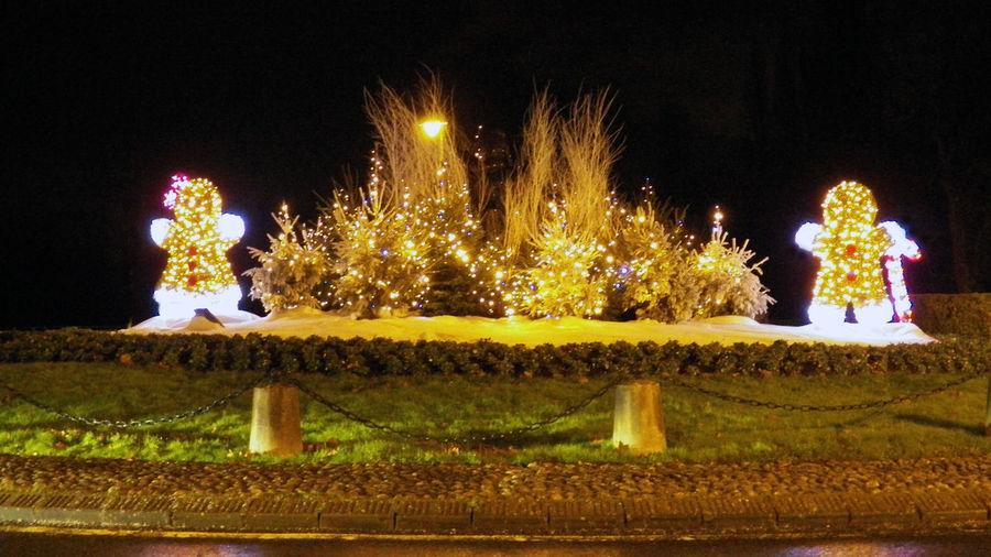 Chritsmas Exterior Decoration Christmas Ornement Christmas Theme Cristmas Illuminated Illuminations Of Night 16x9photography