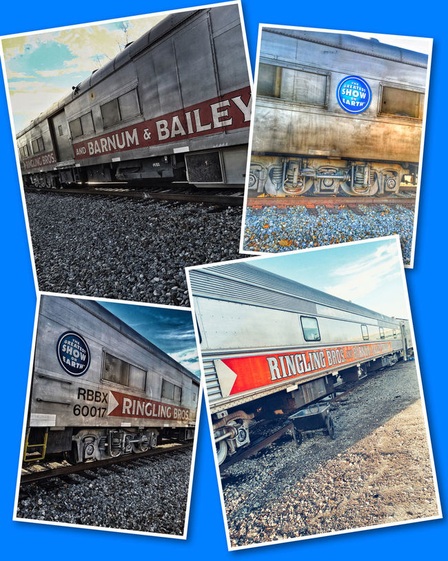 Ringling Brothers Barnum&Bailey Circus Train. The circus has come to Huntsville, AL aboard these train cars. Huntsvillealabama Trainspotting Trains Ringling Bros Ringlingbrothersbarnumbaileycircus CircusTrain