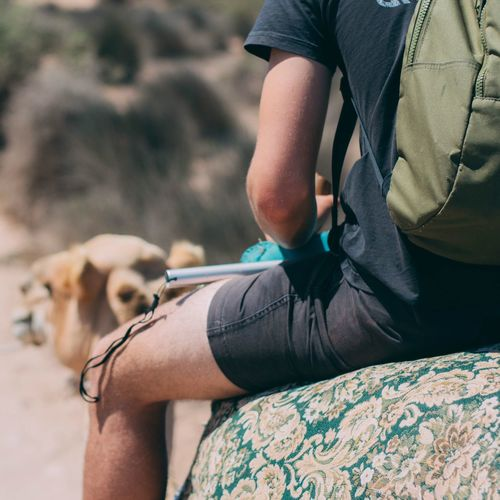 Real People Midsection Domestic Animals Leisure Activity Lifestyles Mammal Men One Animal Pets Dog Day Low Section Medical Exam Outdoors Camel Vacations Morocco Landscape Travel Destinations Beauty In Nature Nature
