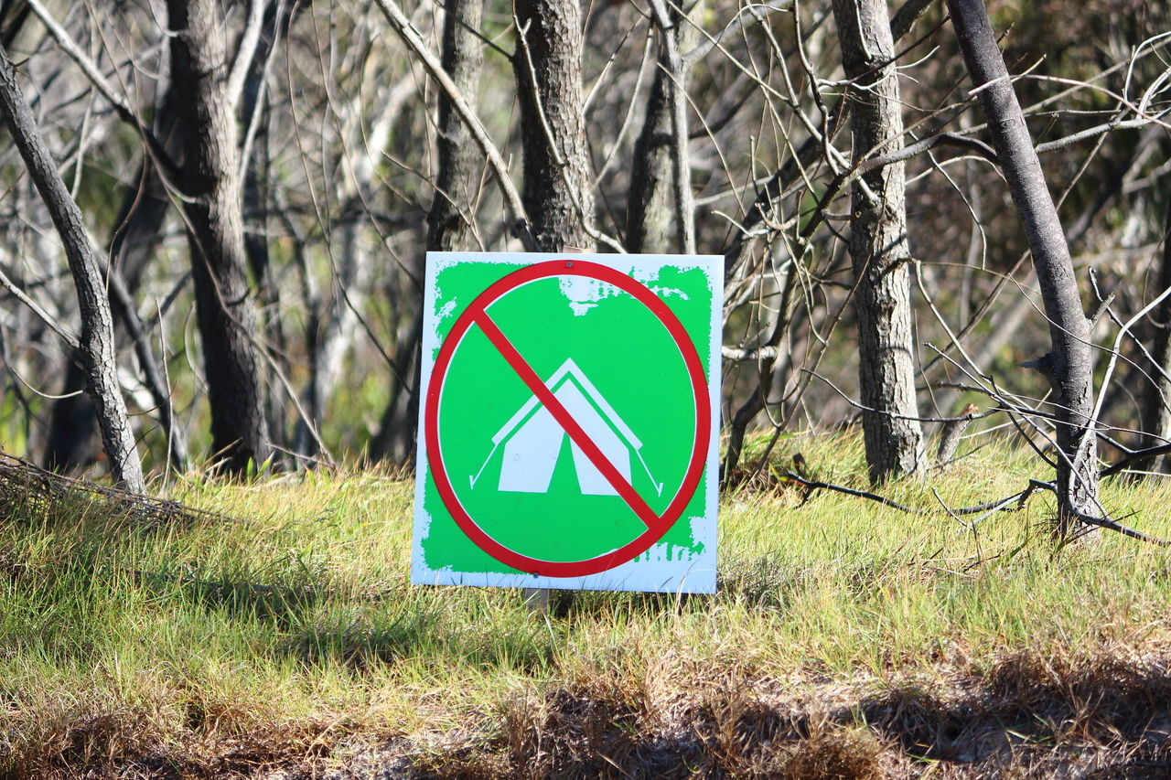 No camping #camping #green #Nature  #revegetation #signs Branch Close-up Communication Day Forbidden Forest Grass Green Color Nature No People Outdoors Road Sign Tree Tree Trunk