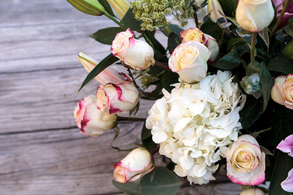 Beautiful stock photos of valentinstag,  Bouquet,  Close-Up,  Day,  Flower