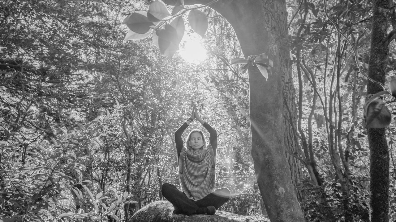 Beauty In Nature Black And White Blackandwhite Branch Calm Day Forest Green Growth Low Angle View Meditate, Contemplate, Think, Consider, Ponder, Muse, Reflect, Deliberate Meditation Meditation Garden Nature One Person Outdoors Peace Plant Real People Scenics Serene Sky Tranquility Tree Tree Trunk