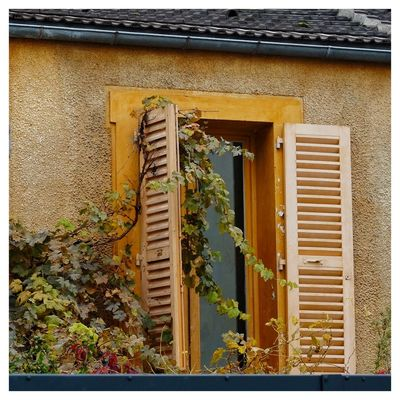 Built Structure Architecture No People Close-up Fujinon 60mm Paris, France  Windows Architecture Fall Fall Colors Outdoors