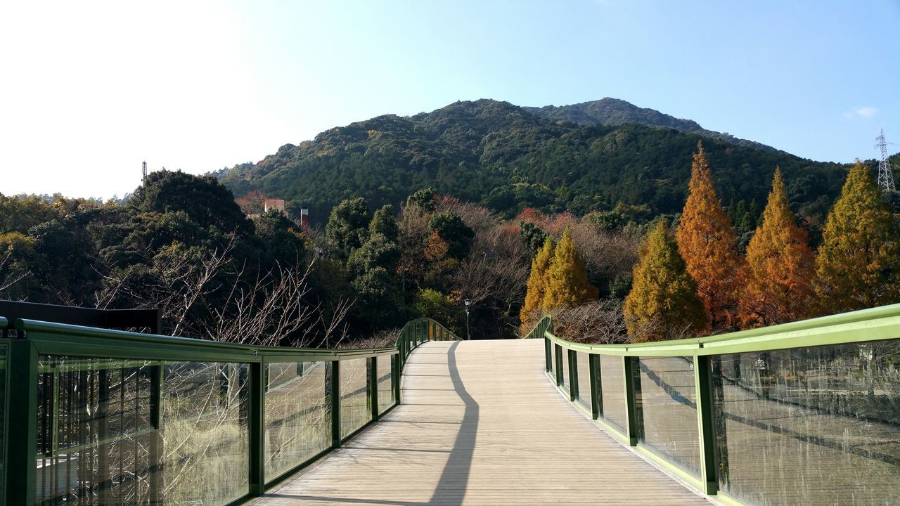 railing, nature, tranquility, tranquil scene, day, tree, scenics, outdoors, no people, beauty in nature, sky, clear sky, mountain, footbridge