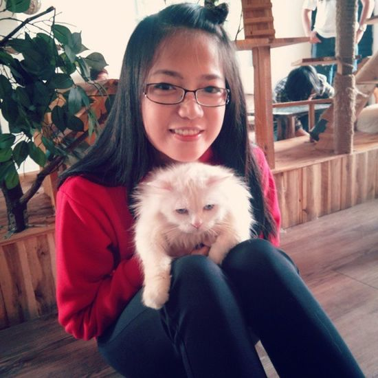 Gentle girl and meomeo Alucat Cafe Kitten Meomeo red glass white cat lovable