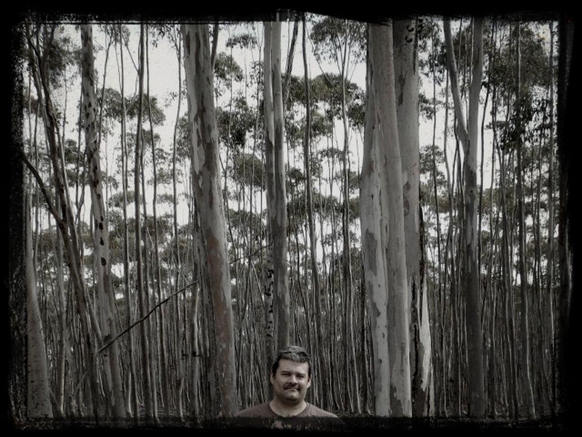 Trees feeling very short Phillip Ott