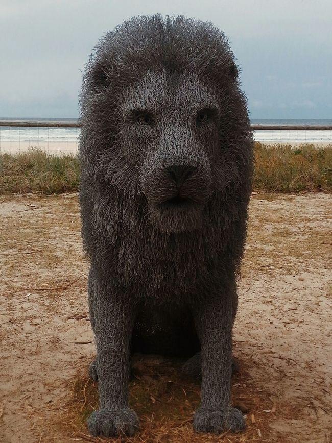 "Amazing Sculpture ! ""Magnificent"" by Ivan Lovatt Swell2015 Gold Coast Australia Beach Vscocam"