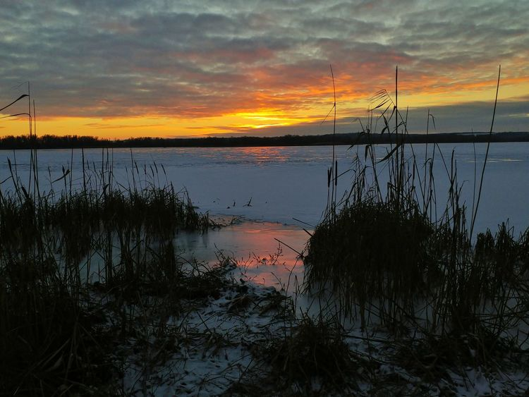 Sunset Reflection Water Sky Nature Lake Outdoors Beauty In Nature Dramatic Sky Sundown Nature Landscape Winter Sky Nofilter Winter Landscape River Bank  Colors Wintertime Sunset  Cloud - Sky Tree No People Reflection Lake Ice