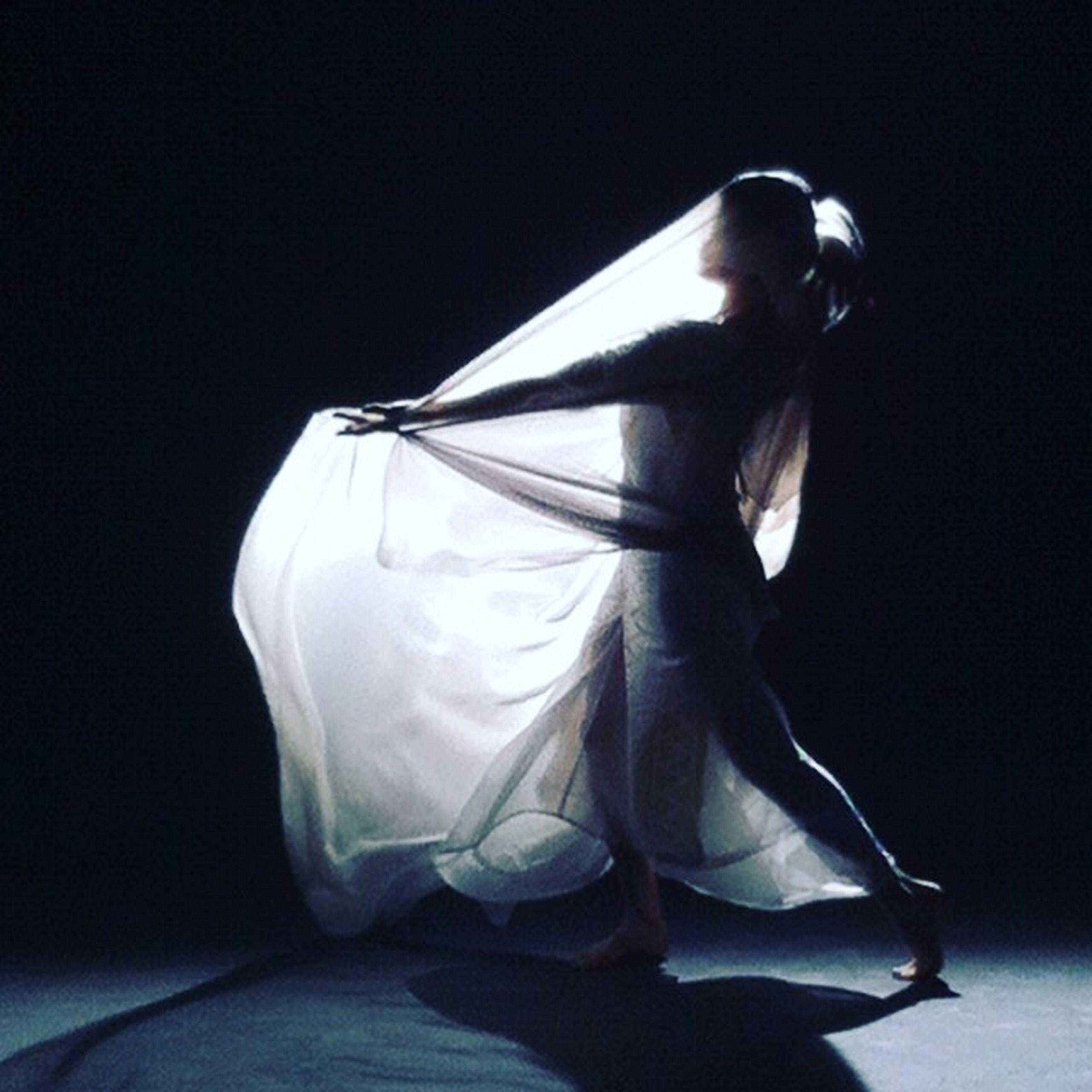 studio shot, one person, black background, animal themes, indoors, ballet, ballet dancer, day