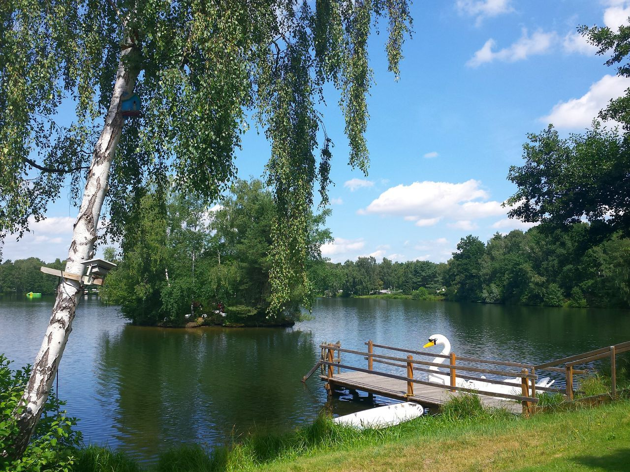 Springhorstsee, Burgwedel, Lower Saxony Lake View Lake Lakeside Lake Escape Relaxing Moments Relaxing View Relaxing Time Tretboot Swan Surf Board Ladyphotographerofthemonth Showcase: July Holidays Erholungsgebiet Erholsam Lovely Lake View Lakes  Colour Of Life