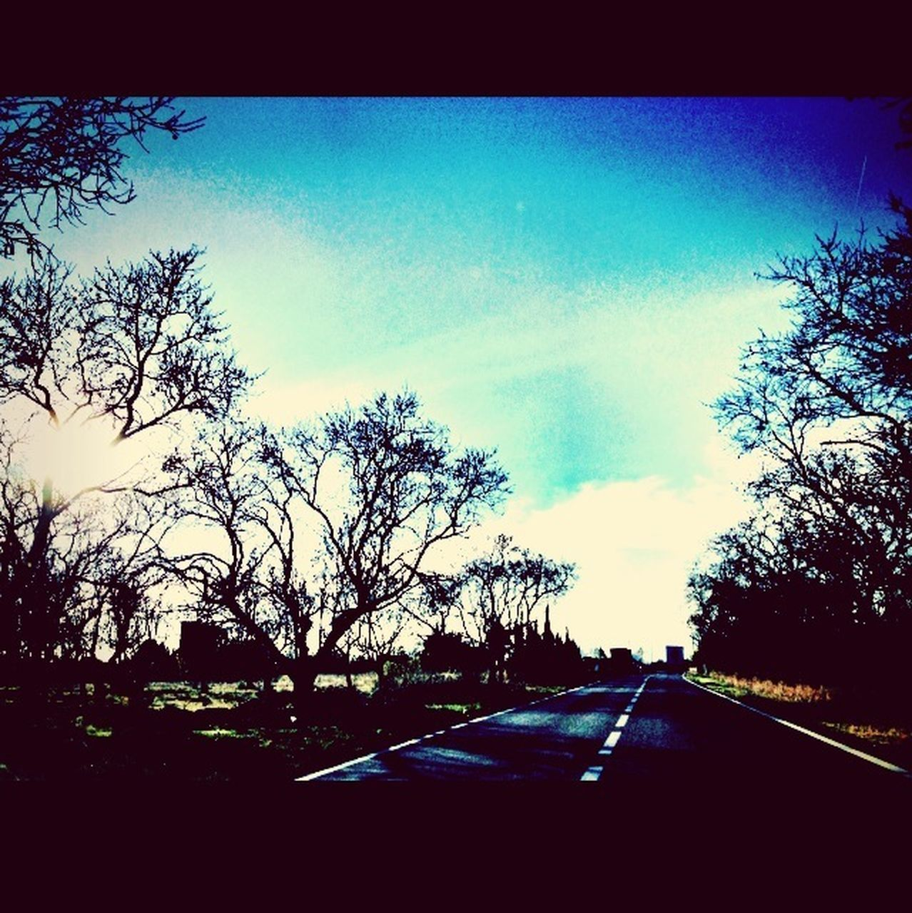 car, road, tree, transportation, windshield, sky, silhouette, the way forward, no people, car interior, nature, day, bare tree, land vehicle, car point of view, outdoors, beauty in nature