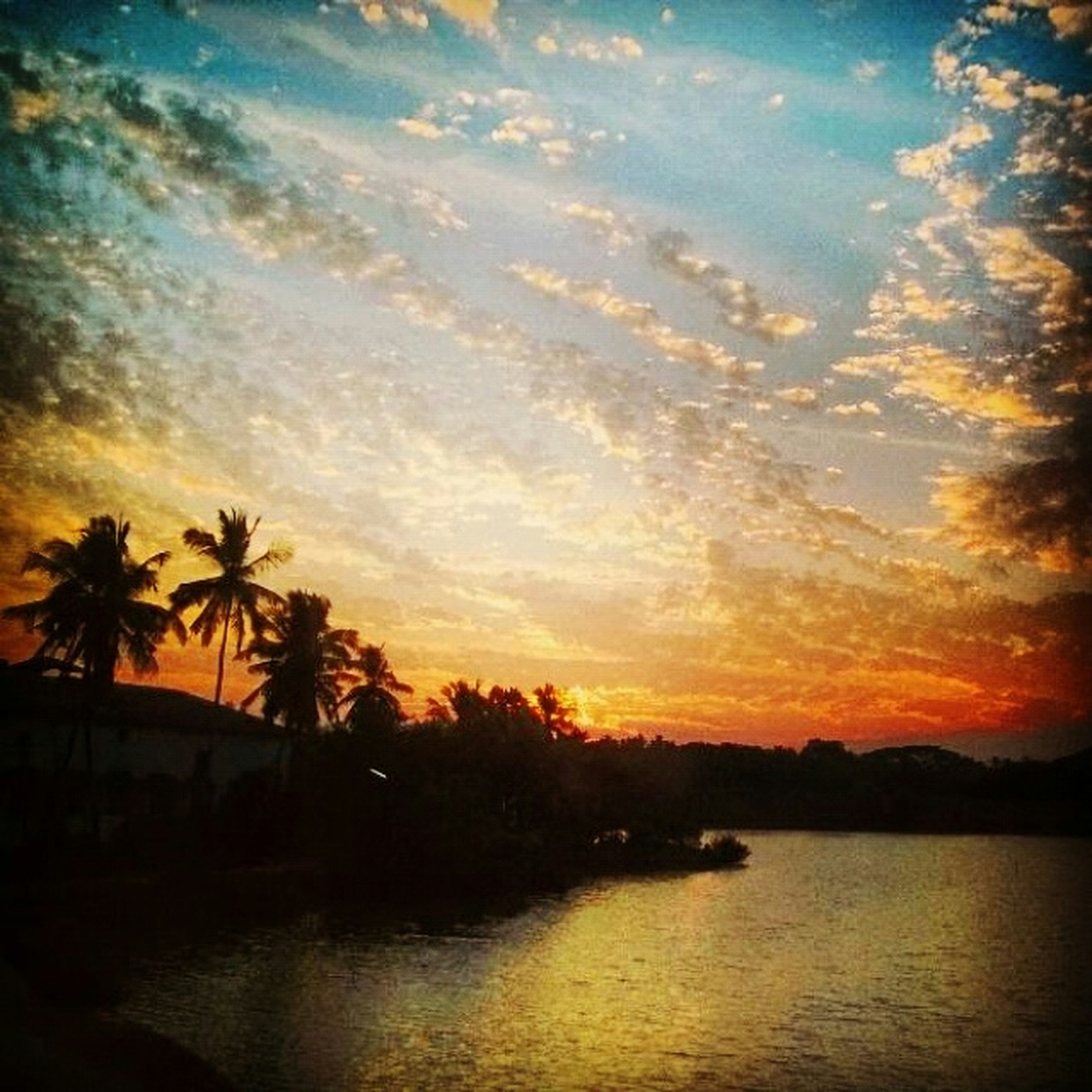 sunset, water, tree, scenics, sky, tranquil scene, silhouette, beauty in nature, tranquility, orange color, reflection, nature, waterfront, idyllic, cloud - sky, palm tree, lake, river, cloud, dramatic sky