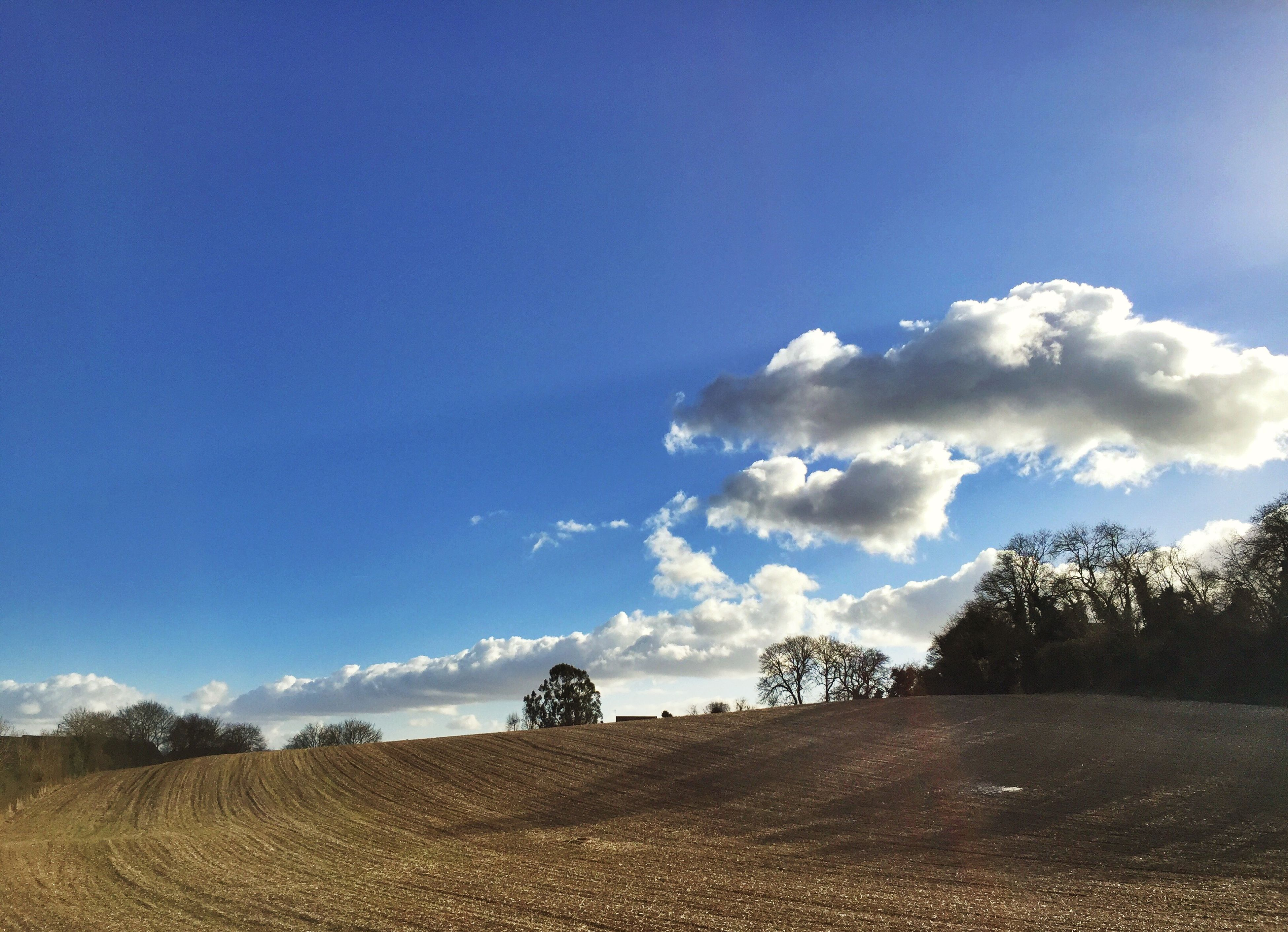 sky, blue, landscape, tree, tranquility, tranquil scene, field, nature, beauty in nature, scenics, cloud - sky, sunlight, copy space, cloud, day, outdoors, non-urban scene, remote, rural scene, no people