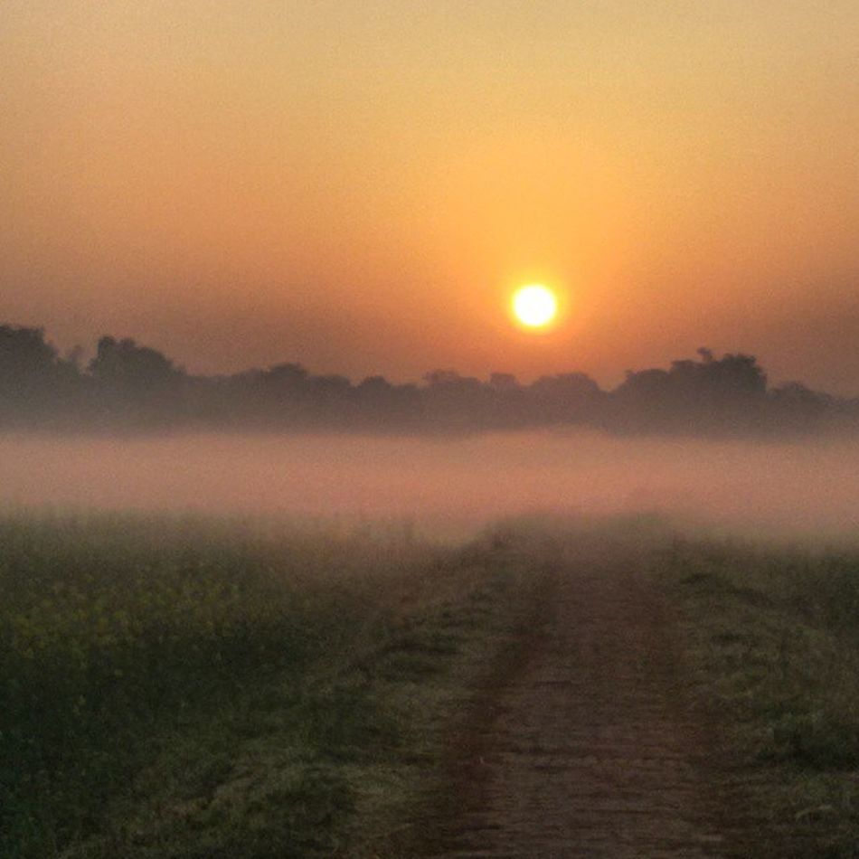 Naturelovers Nature Naturebueaty Traveller Indiantour Indiantourism Increadibleindia UttarPradesh Sunrise_sunsets_aroundworld Instapic Instaguy Indiainsta Indianinstagram NETGEO Discovery Planet Earth Samsunggalaxygrand2 Sunrise