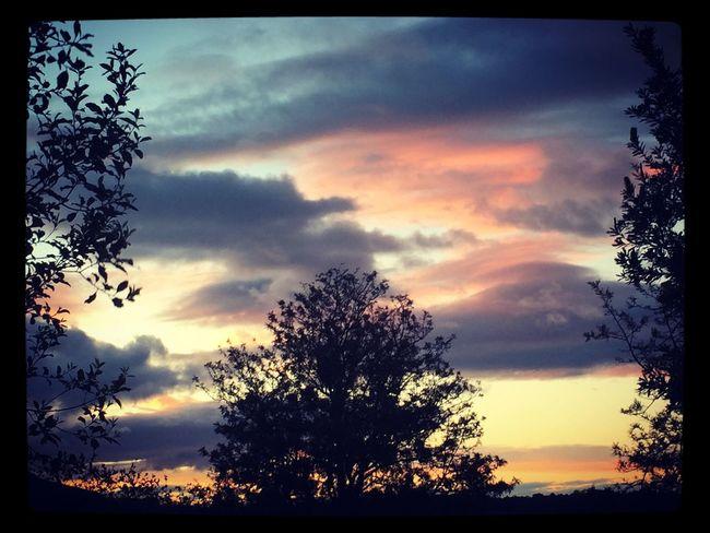 Nature 🍃🌥👌🏼 #prettyskies