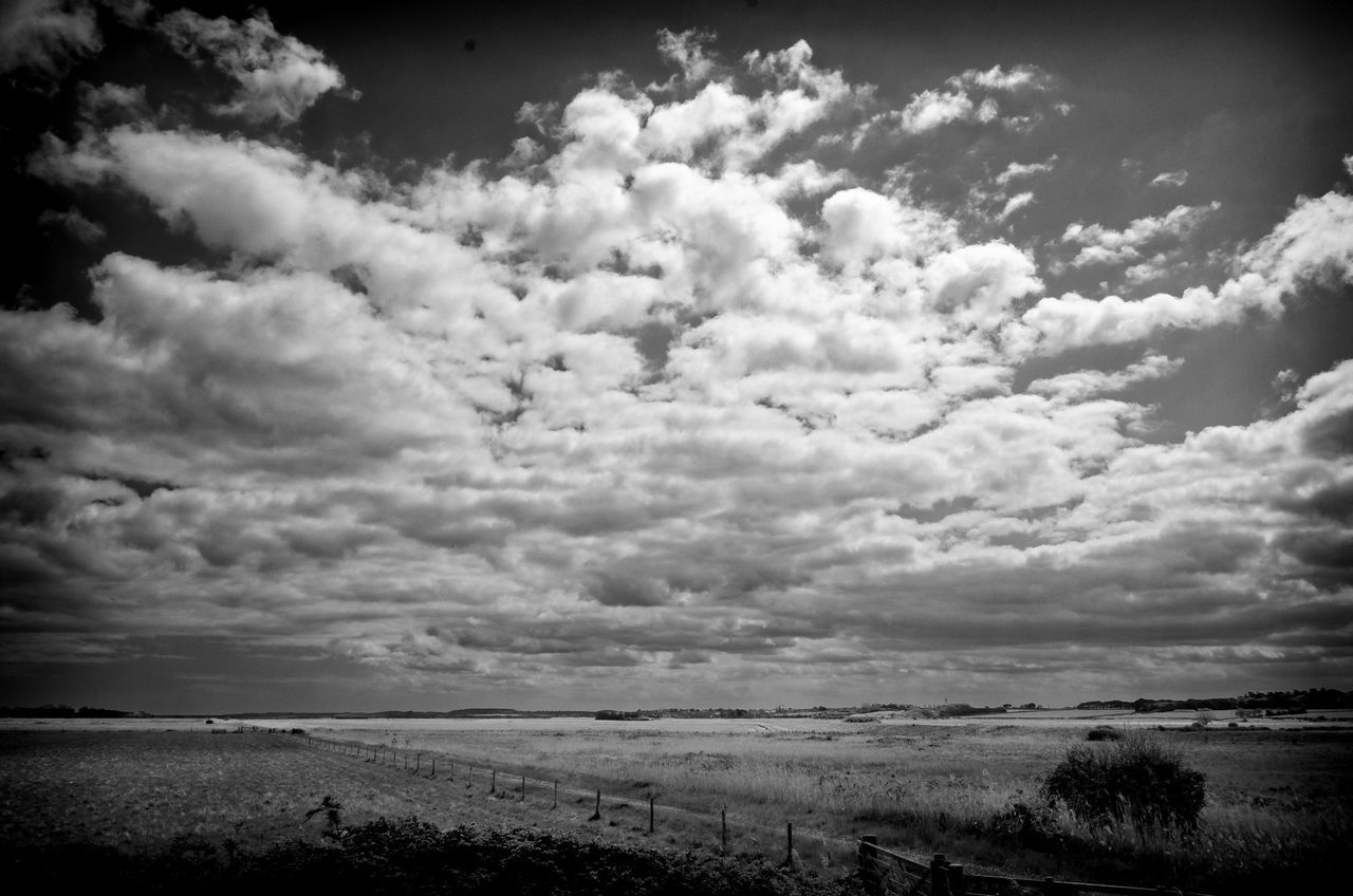 View toward Wells 03. Holkham estate , North Norfolk. A real gem of East Coast. Nikon coolpix A, edit in Lightroom and DXO pro10. Blackandwhite Monochrome Norfolk Uk Landscape_Collection Clouds And Sky Holkham Landscape_photography Enjoying The View