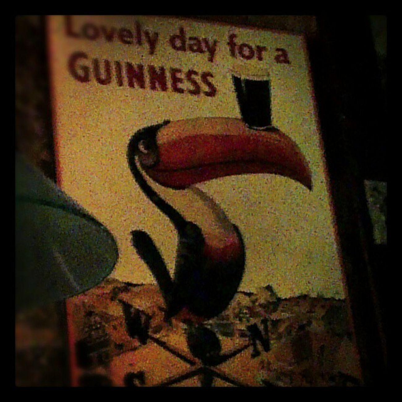 Beer Guiness Stjamespub Irishambiance Lyon