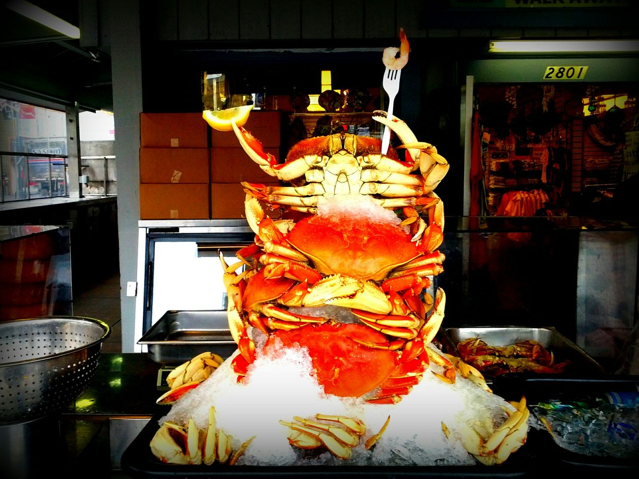 Fisherman's Wharf San Francisco California King of Crab Dungeness Crab Outdoor Photography Street Photography