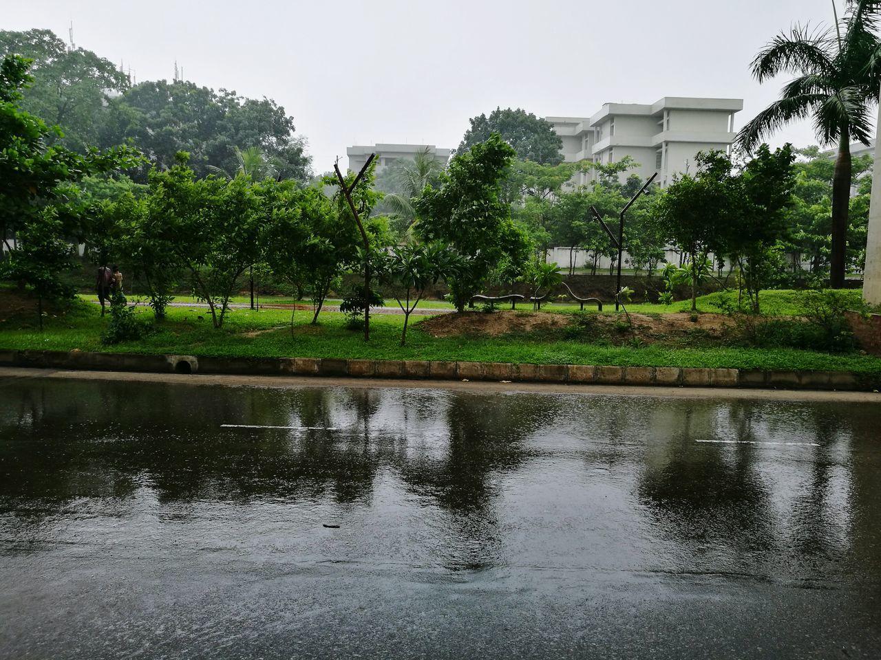 A RAINY DAY..... Nature Rainy Weather Rain Rainy Days Rainy Season Nature Photography Rain Photography After Rain Its Raining