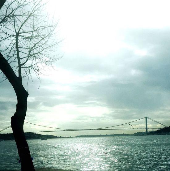 Good Traveling City Istanbul Bridge Weather Morning Istanbul Turkey Goodmorning Hello World