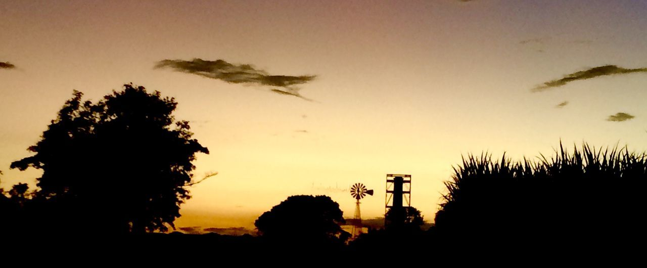 Sunset Silhouettes Sunset Windmill Trees Silhouettes Sunset Colours Sunset And Shodows Sillouette Sillouettes