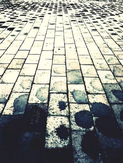Joy Of IP Water Bricks