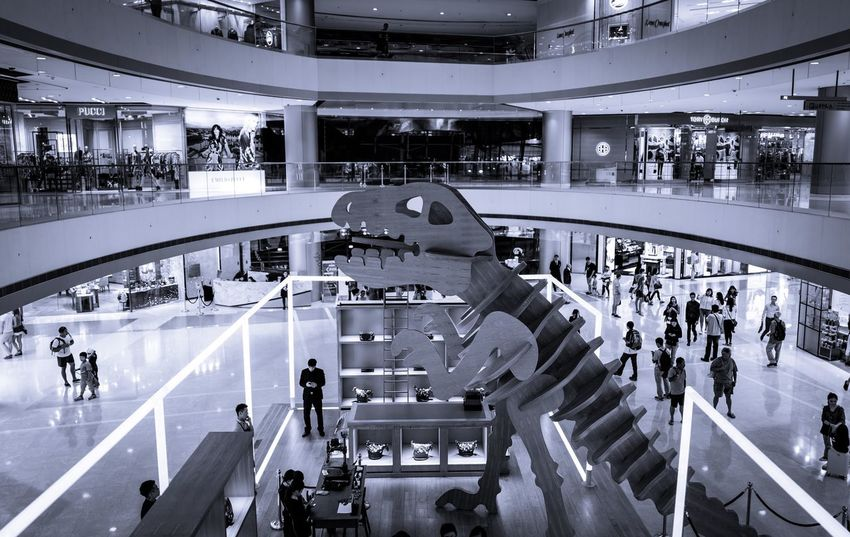 in the mall Dinosaur Black And White Capture The Moment Monochrome Photography Monochrome Leicaq EyeEm Masterclass Craft Central Walking Around The City  EyeEm Best Shots EyeEm Best Edits EyeEm Gallery Found On The Roll Urban Exploration Our Best Pics Taking Photos Hello World From My Point Of View Walking Around Moment Beautiful Madeinwetzlar Discoverhongkong Blackandwhite