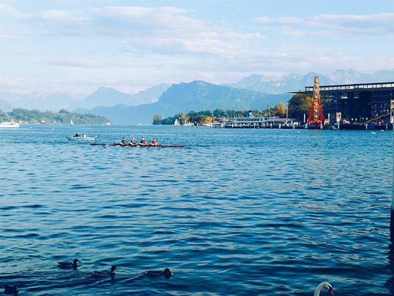 Beautiful day in Lucerne. LakeLucerne Lucerne Swiss Switzerland Europe Travel Adventure Wanderlust Exploreswitzerland Visitswitzerland Neverstopexploring  Explorer Traveller Traveltheworld Journey Ducks Lake Sky Travellover View Nature Discover  Blue Wave Blue Sky