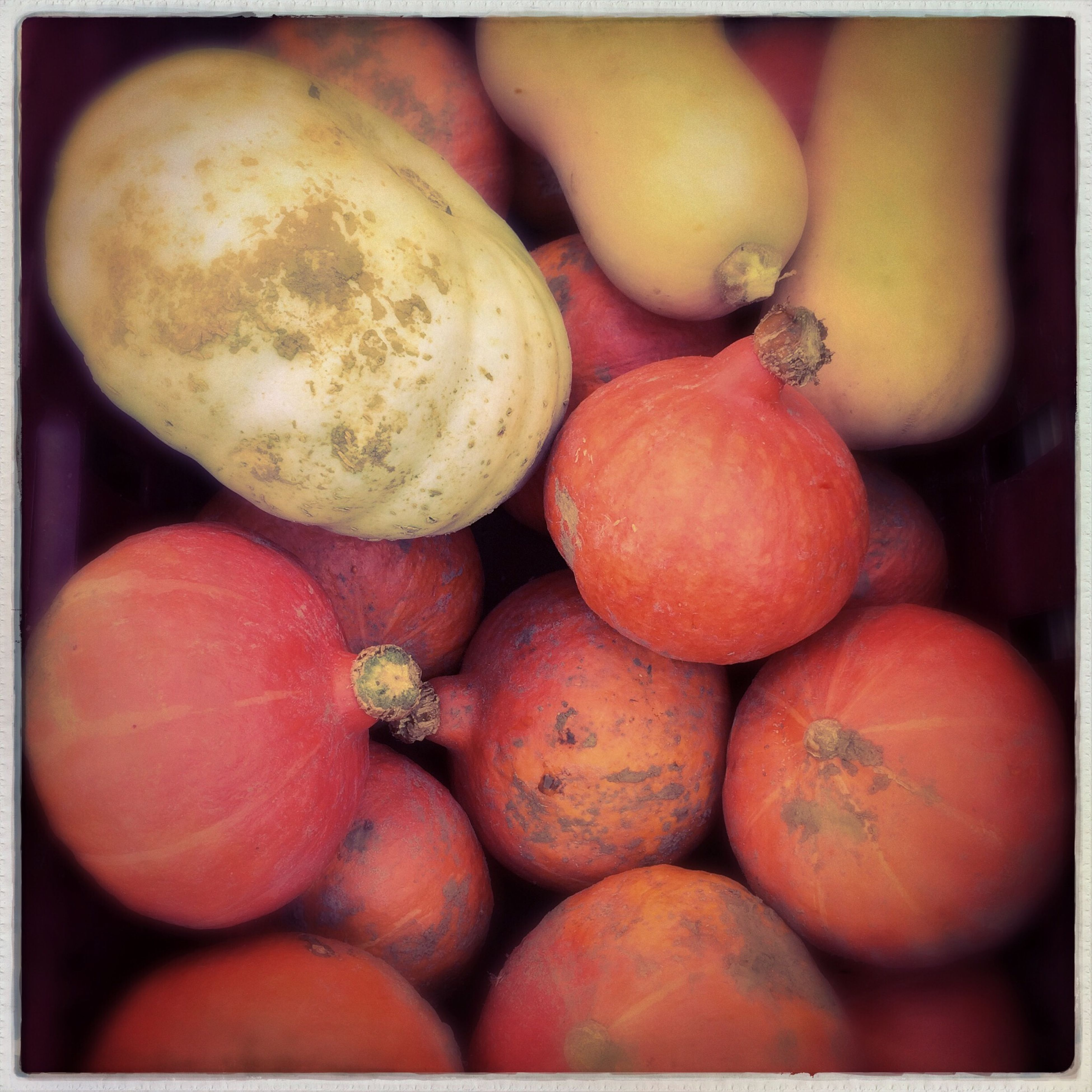 transfer print, food and drink, healthy eating, auto post production filter, food, freshness, fruit, close-up, vegetable, abundance, large group of objects, red, organic, orange color, ripe, day, outdoors, high angle view, raw food