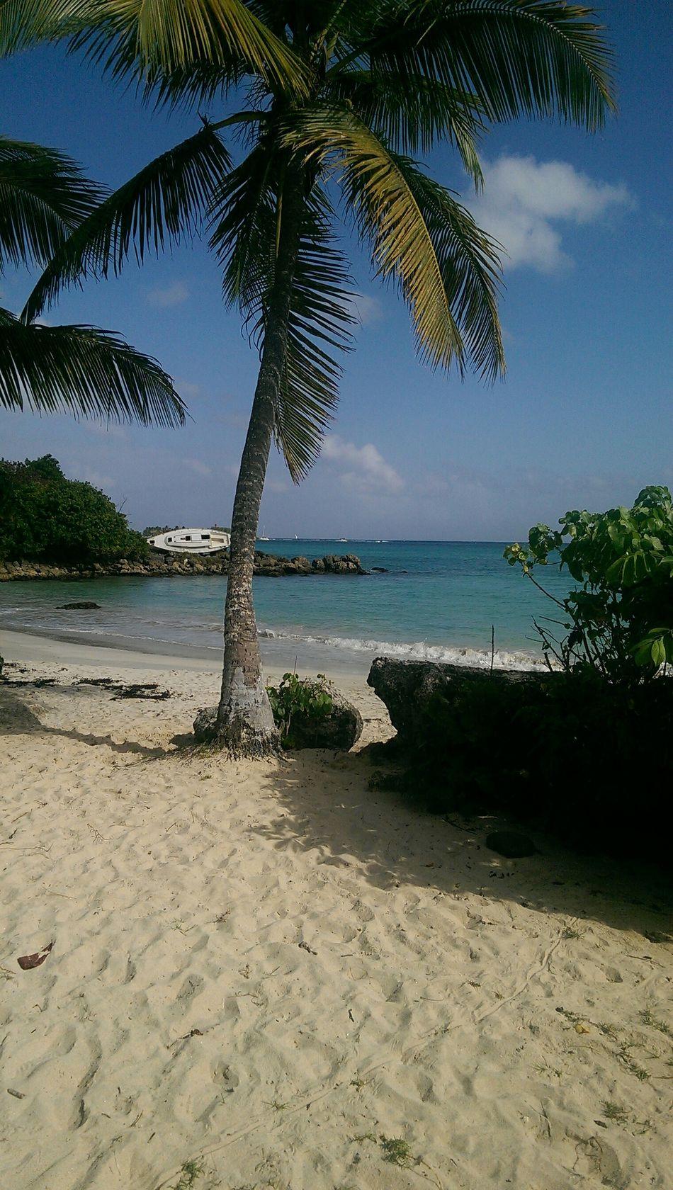 Lifeisabeach Hello World Guadeloupe 2015