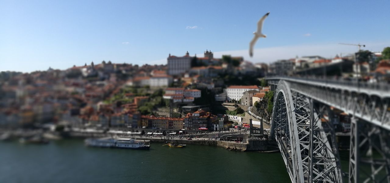 Day Sky Architecture City Water Outdoors No People Flying Nautical Vessel Bird Porto Portugal Douro